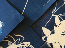 Cyanotype printing with Raimond de Weerdt